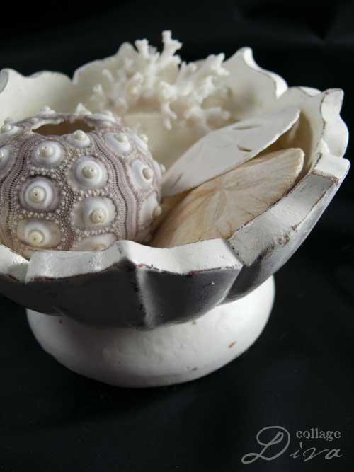 2-shells
