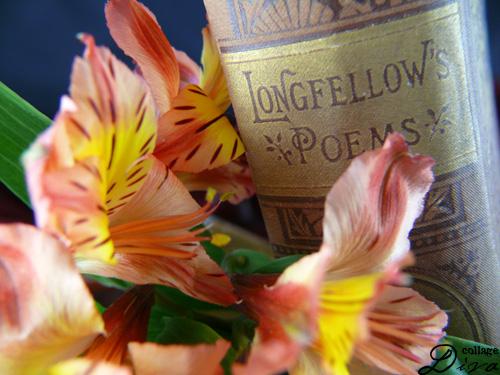 1-longfellow