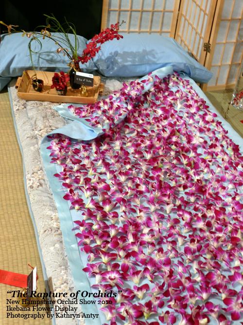 4-blanket