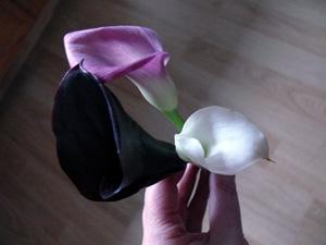 6-flowerscelia