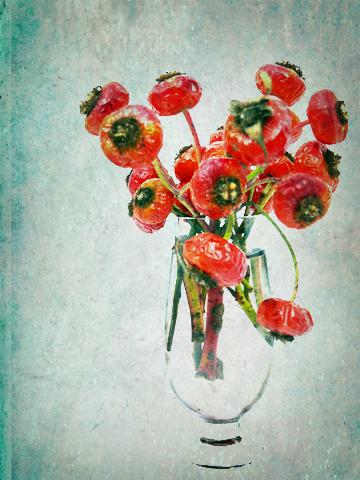 Rosehips-vintage2