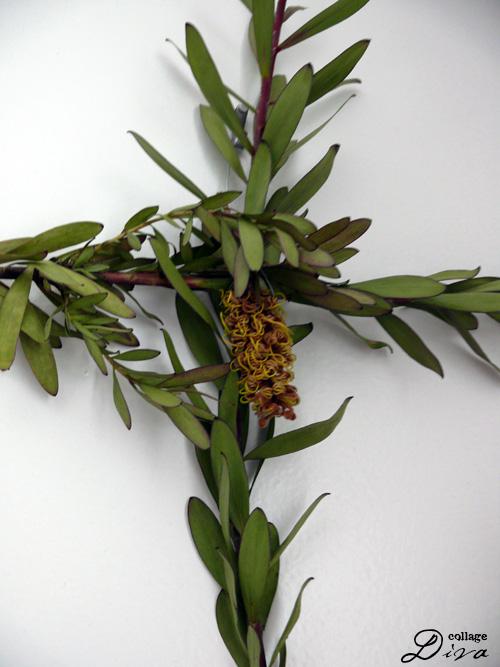 3-growth