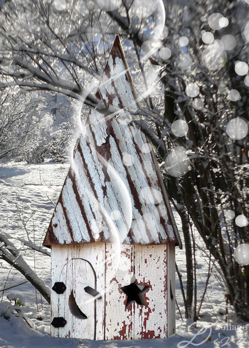 5-witch-home-snowy