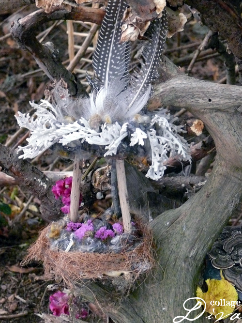3-nest