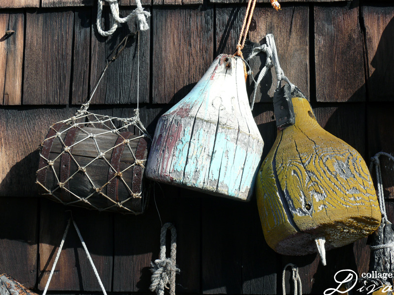 31-buoys