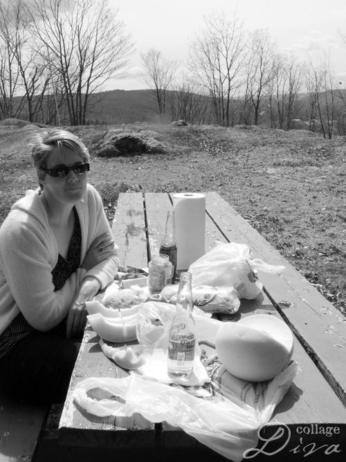 6-picnic