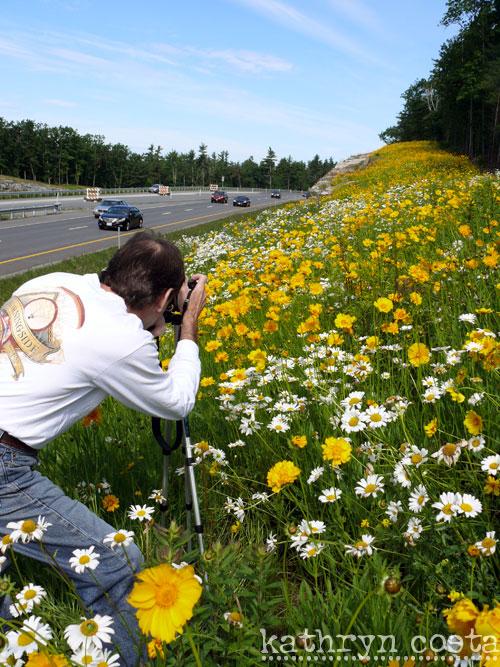 1-FlowersHighway2012