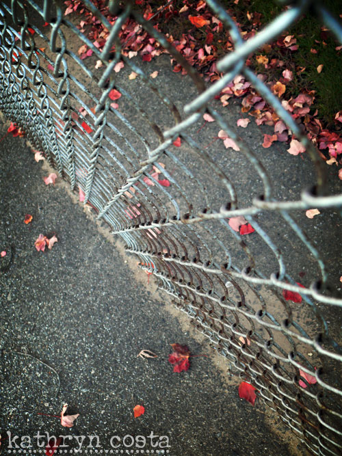 3-fence