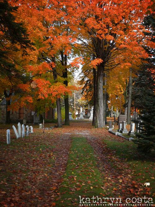 6-cemetery