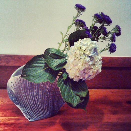 Birthday-hydrangea