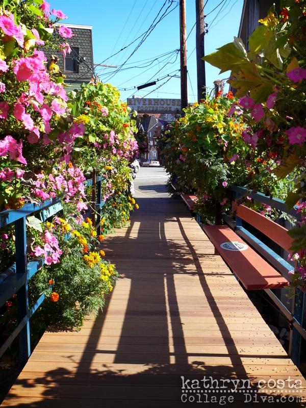 8-Camden-Bridge