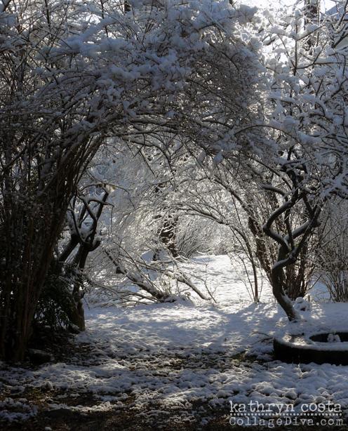 Snowypath-source