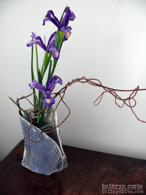 4-Iris