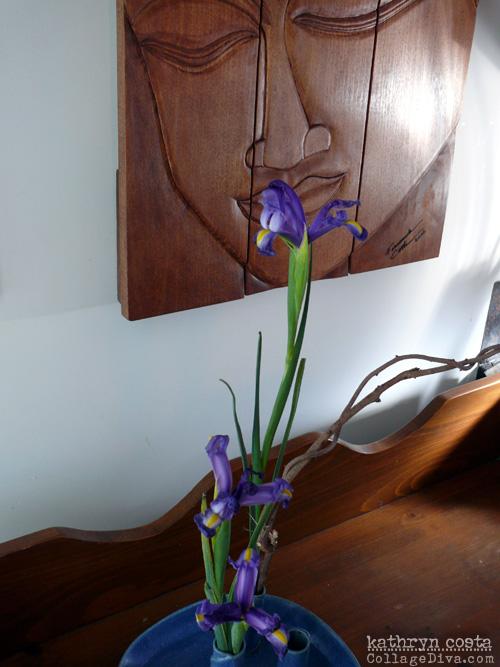 8-Iris2