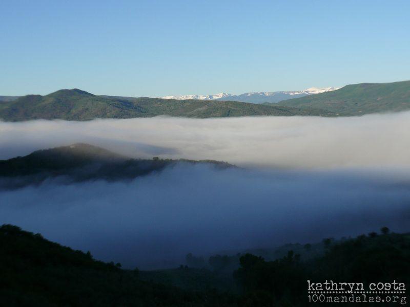 2-Fog1