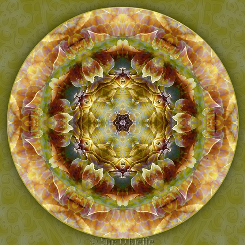 Deeper Mandala copy
