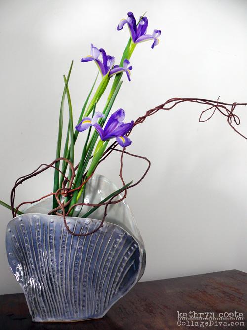 2-Iris